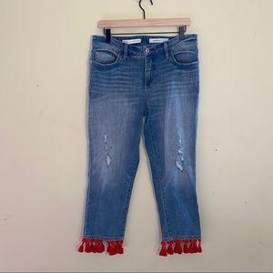 ANTHRO PILCRO & THE LETTERPRESS boyfriend jeans